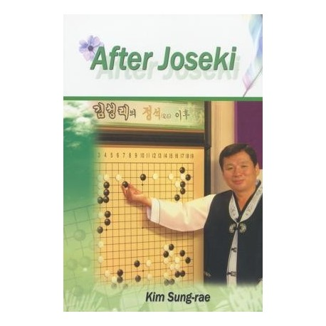 After joseki - Kim Sung-Rae