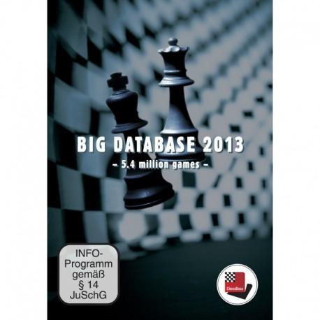 Big Database 2013 DVD